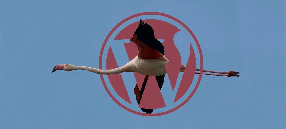 Migration d'une base de données WordPress, plugin WP migrate DB