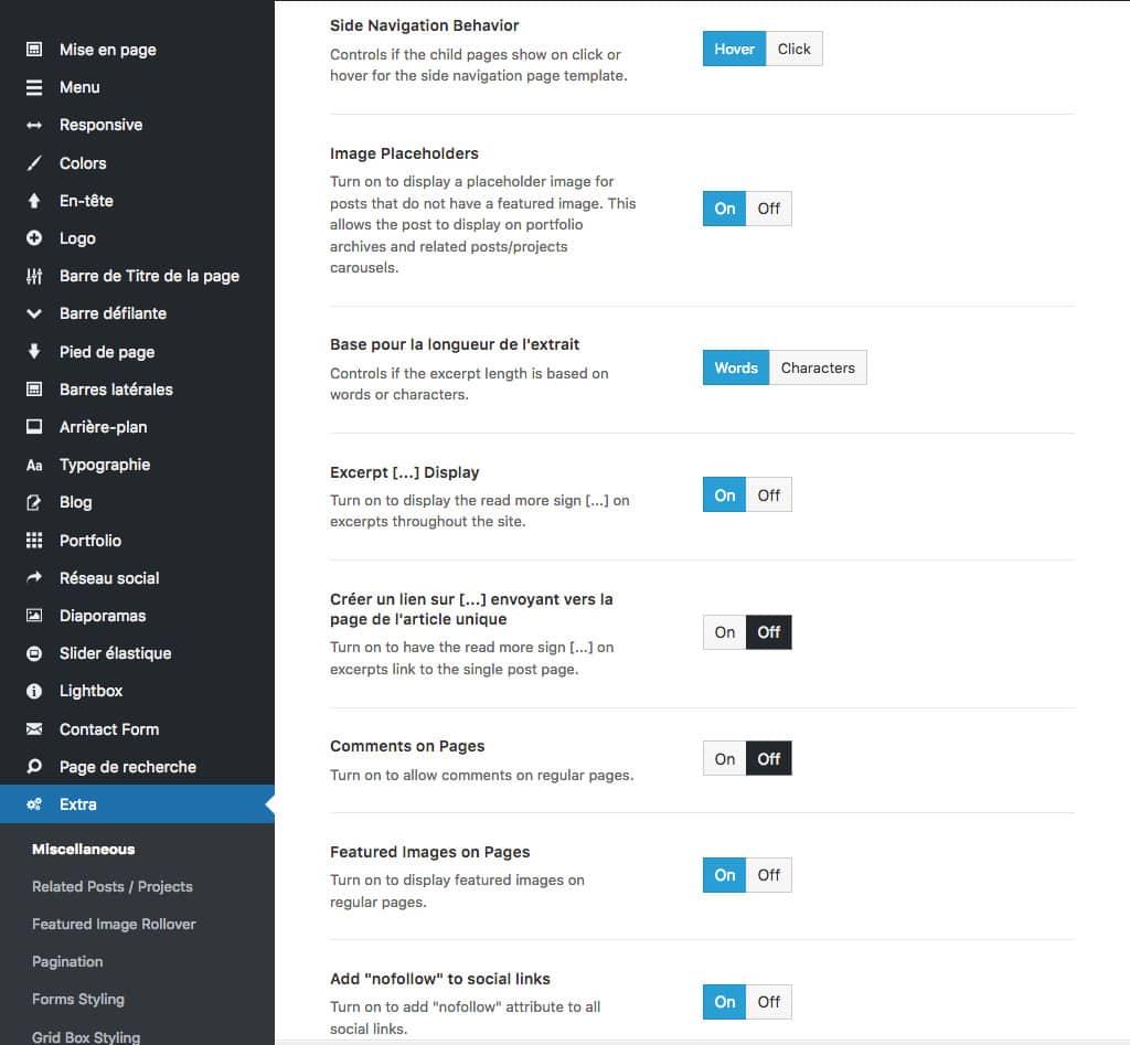 Les Options D Avada Guide Technique Complet Du Theme Wordpress