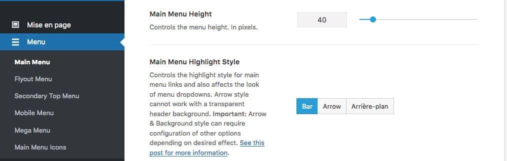 Paramètres des menus de navigation du thème WordPress premium Avada